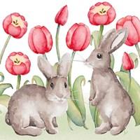 Easter Tulip II Fine-Art Print