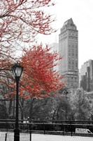 Central Park with Red Tree Fine-Art Print