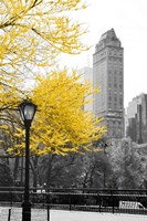 Central Park with Yellow Tree Fine-Art Print