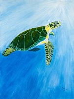 Green Turtle Fine-Art Print