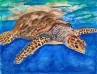 Turtle at Sea Fine-Art Print