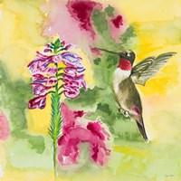 Watercolor Hummingbird Fine-Art Print
