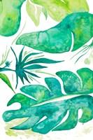 Plant Party II Fine-Art Print