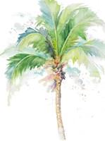 Watercolor Coconut Palm Fine-Art Print