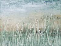 Grass Memories Fine-Art Print