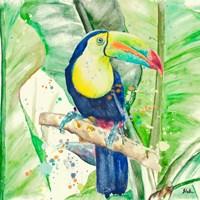 Colorful Toucan Fine-Art Print