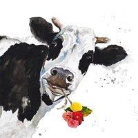 Crazy Cow Fine-Art Print