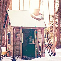 Holiday Shed Fine-Art Print