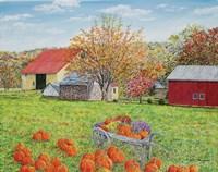 Autumn's Colors Fine-Art Print