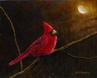 Cardinal In The Moonlight Fine-Art Print
