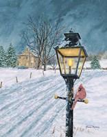 Winter Bird Fine-Art Print