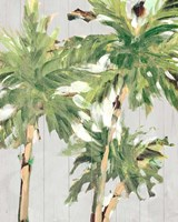 Caribbean Palm Trees Fine-Art Print