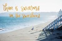 Sweetness in the Sunshine Fine-Art Print