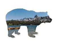 Lake Scenery Bear Fine-Art Print