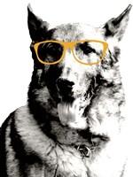 Cool Dog Fine-Art Print