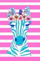 Funky Zebra Fine-Art Print