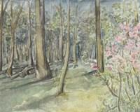 Virginia Woods I Fine-Art Print