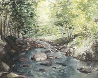 Virginia Woods IV Fine-Art Print
