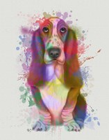 Basset Hound Rainbow Splash Fine-Art Print