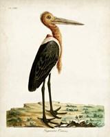 Gigantic Crane Fine-Art Print