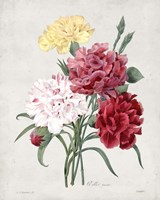 Bouquet I Fine-Art Print