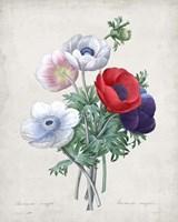 Bouquet II Fine-Art Print