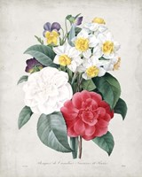Bouquet III Fine-Art Print