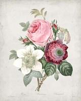 Bouquet IV Fine-Art Print