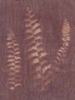 Botanical Sun IV Fine-Art Print