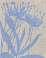 Dusk Botanical VI Fine-Art Print
