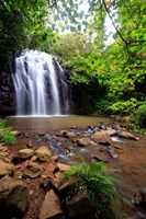 Ellinjaa Falls,  Waterfall Circuit, Queensland, Australia Fine-Art Print