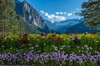 Wildflowers In Banff National Park Fine-Art Print