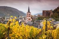 Germany, Rhineland-Pfalz, Bacharach, Elevated Town View In Autumn Fine-Art Print