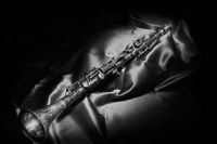 Black And White Still-Life Image Of A Brass Clarinet Fine-Art Print