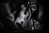 Still-Life Black And White Image Of A Violin Fine-Art Print