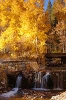 Autumn Waterfalls In The Sierra Fine-Art Print