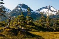 Mount Eccles Near Cordova, Alaska Fine-Art Print