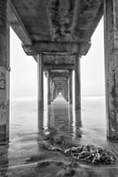 Scripps Pier, California (BW) Fine-Art Print