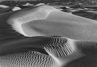 Valley Dunes Desert, California (BW) Fine-Art Print