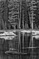 California, Sierra Lake (BW) Fine-Art Print