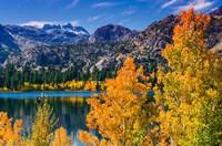 Golden Fall Landscape At June Lake Fine-Art Print