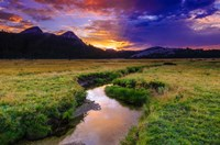Sunset Over Tuolumne Meadows Along Budd Creek Fine-Art Print