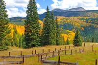 Autumn Colors In The San Juan Mountains, Colorado Fine-Art Print