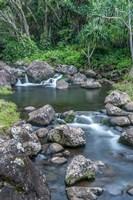 Limahuli Garden And Preserve, Kauai, Hawaii Fine-Art Print