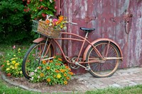 Old Bicycle With Flower Basket, Marion County, Illinois Fine-Art Print