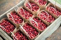 Bagged Cranberries Fine-Art Print