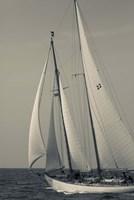 Schooner #22 Sailing, Massachusetts (BW) Fine-Art Print