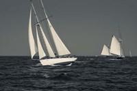 Schooner's Sailing In Cape Ann (BW) Fine-Art Print