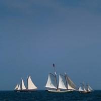 Three Schooners Sailing In Cape Ann Fine-Art Print