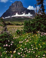 Clements Mountain, Glacier National Park, Montana Fine-Art Print